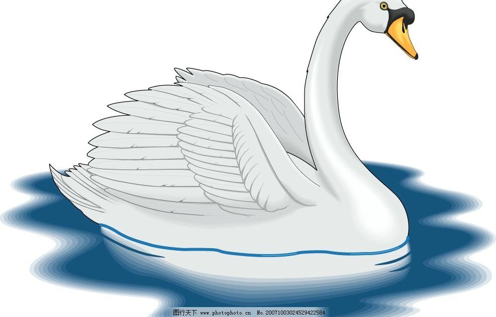 鹅 矢量 动物 生物世界 家禽家畜 矢量图库   ai