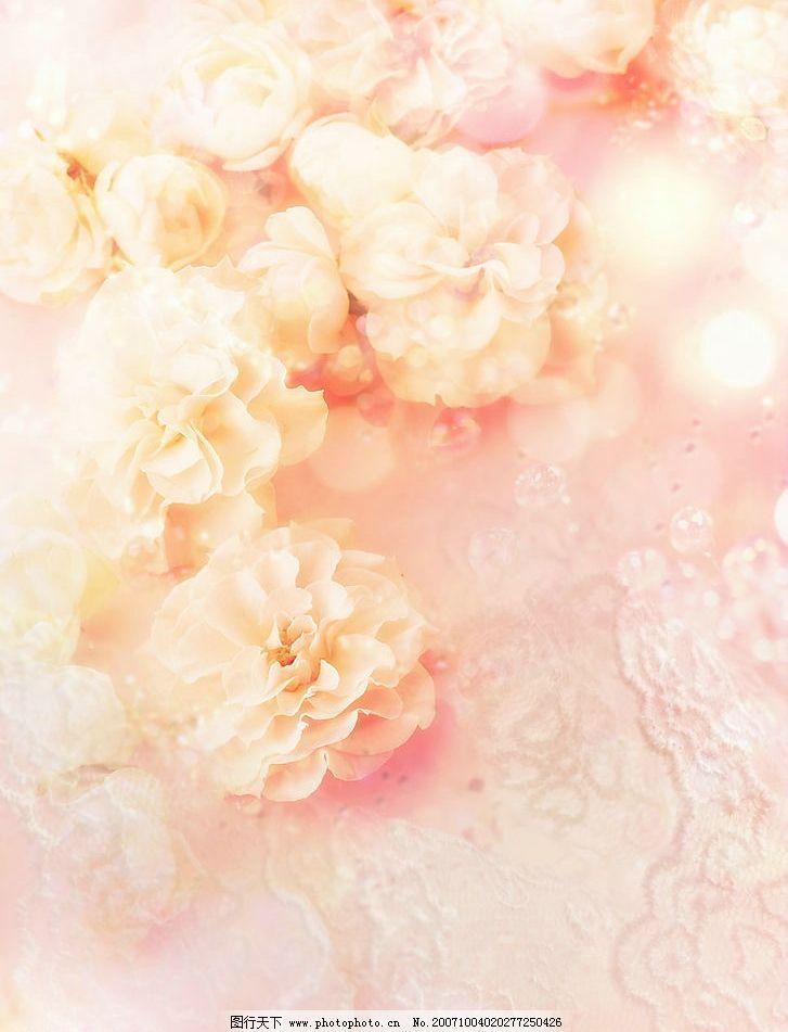 浪漫花朵背景 浪漫背景 梦幻素材 漂亮背景 梦幻底图 合成背景 梦幻