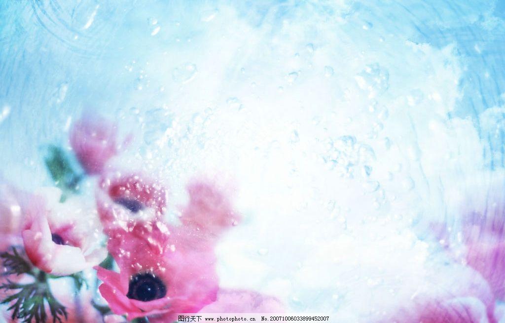 朦胧花朵 自然 生态 清新 素雅 朦胧 淡雅 其他 图片素材 清新素材 设