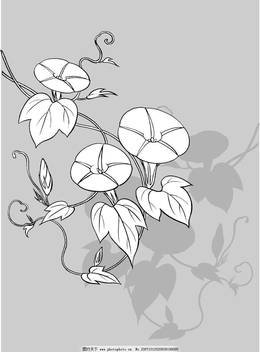 日本线描植物和花卉 底纹边框 矢量图库