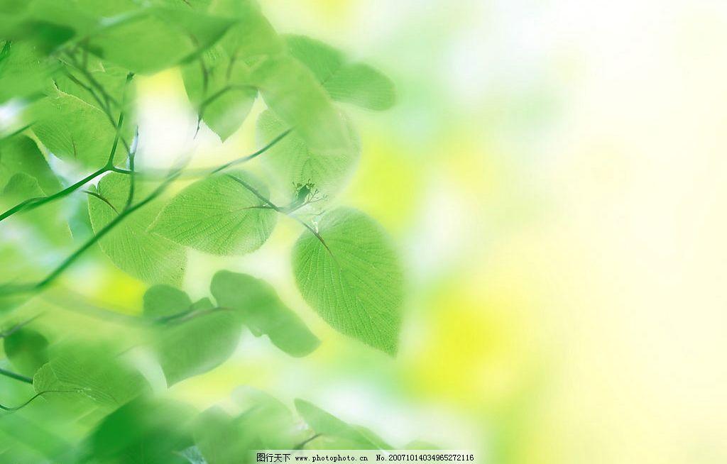 清新 自然景观 其他 清新背景 摄影图库