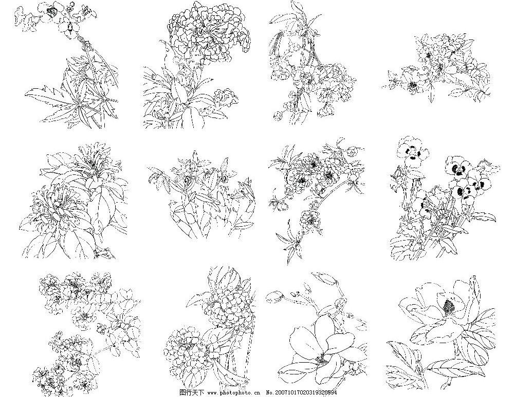 花卉线描 cdr 底纹边框 花纹花边 矢量图库   cdr