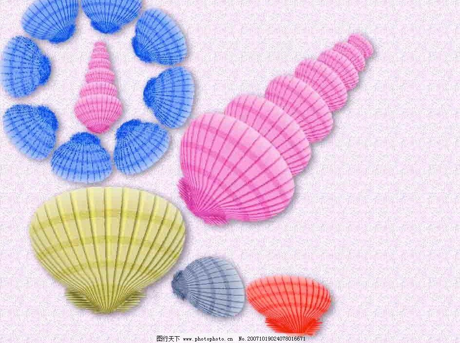 手绘彩色贝壳图片
