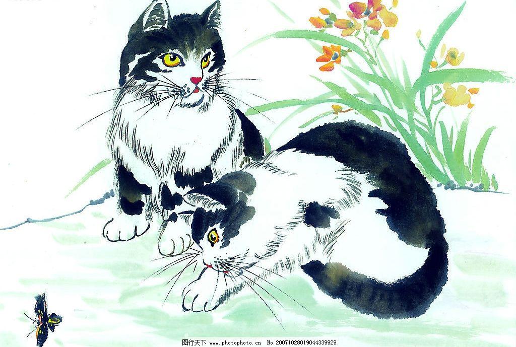 中国画--猫(51张) 美术 艺术 高清晰 美术绘画 美术图片