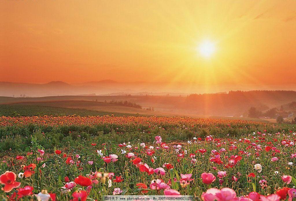 晨光 自然景观 自然风景 摄影图库 72 jpg