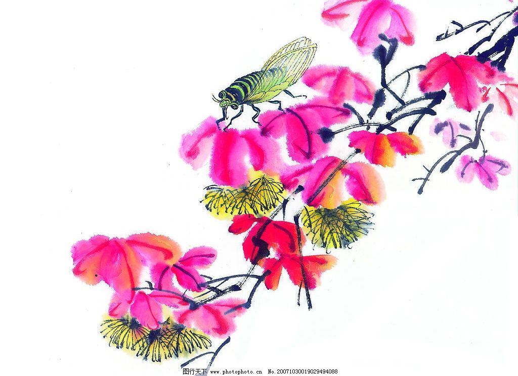 中国画---昆虫 中国画 国画 花鸟鱼虫 昆虫 美术 艺术 写意 文化艺术