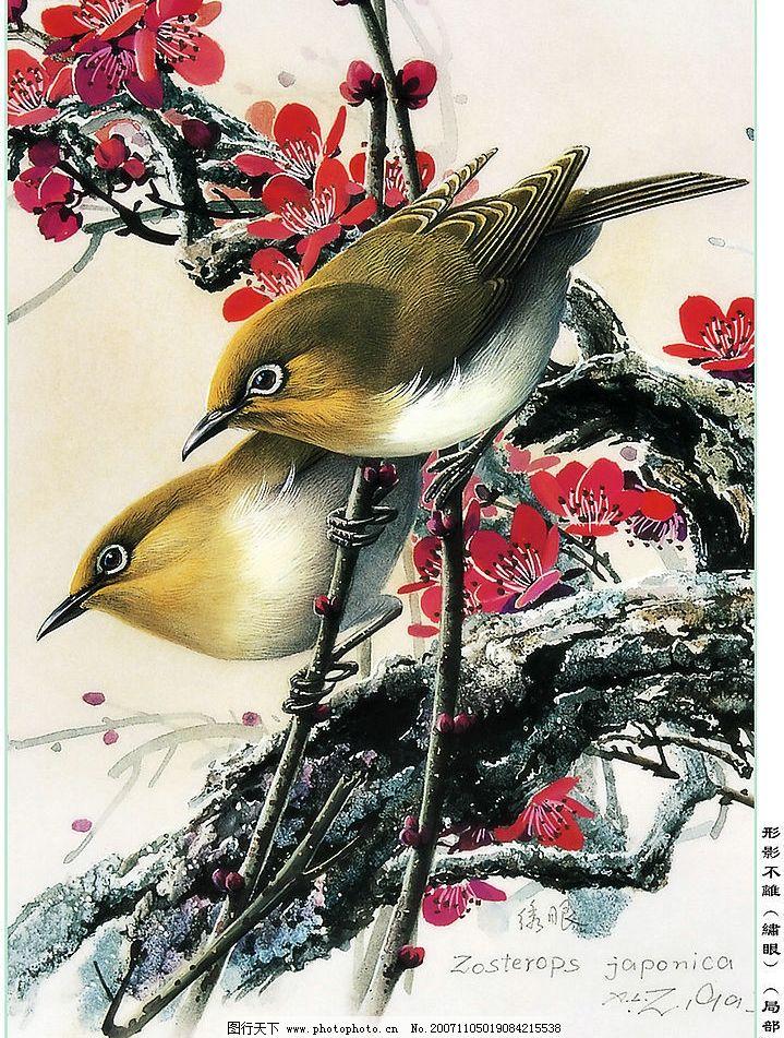 小鸟   文化艺术 美术绘画 高清晰鸟 设计图库 300 jpg