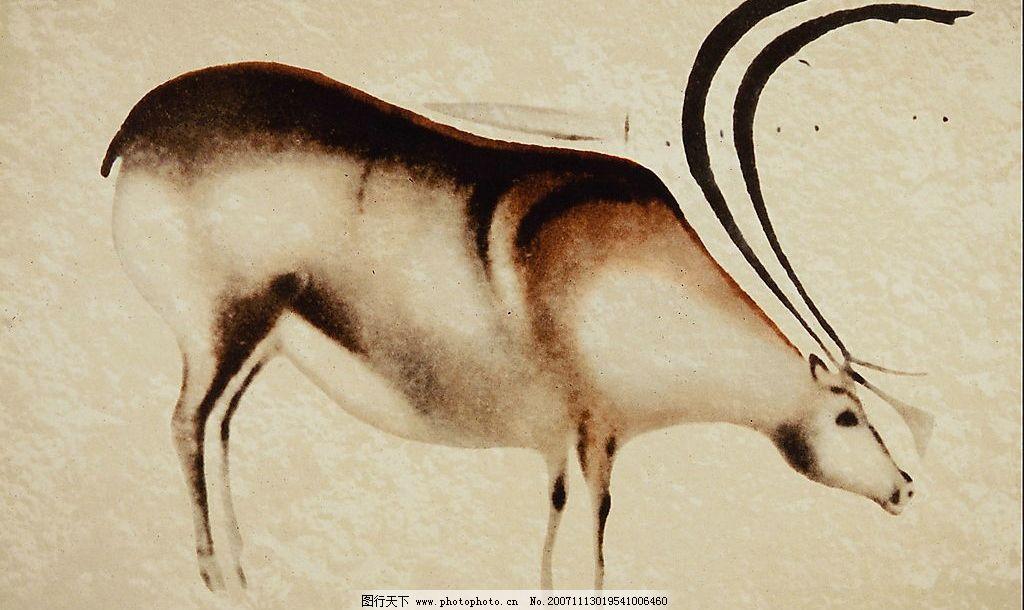 欧洲的代表动物是什么