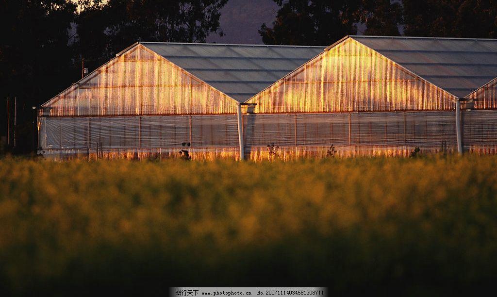 手绘现代农场景观