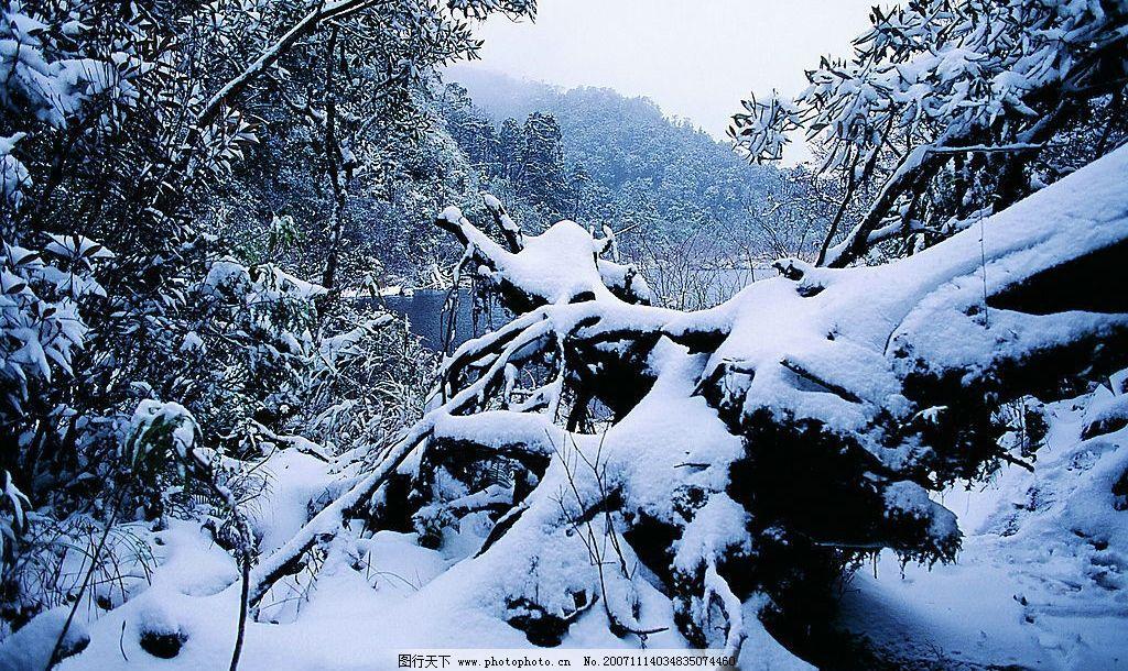 精品底纹素材-冬天雪景 精品 素材 风景 冬天 风光 雪景 自然景观