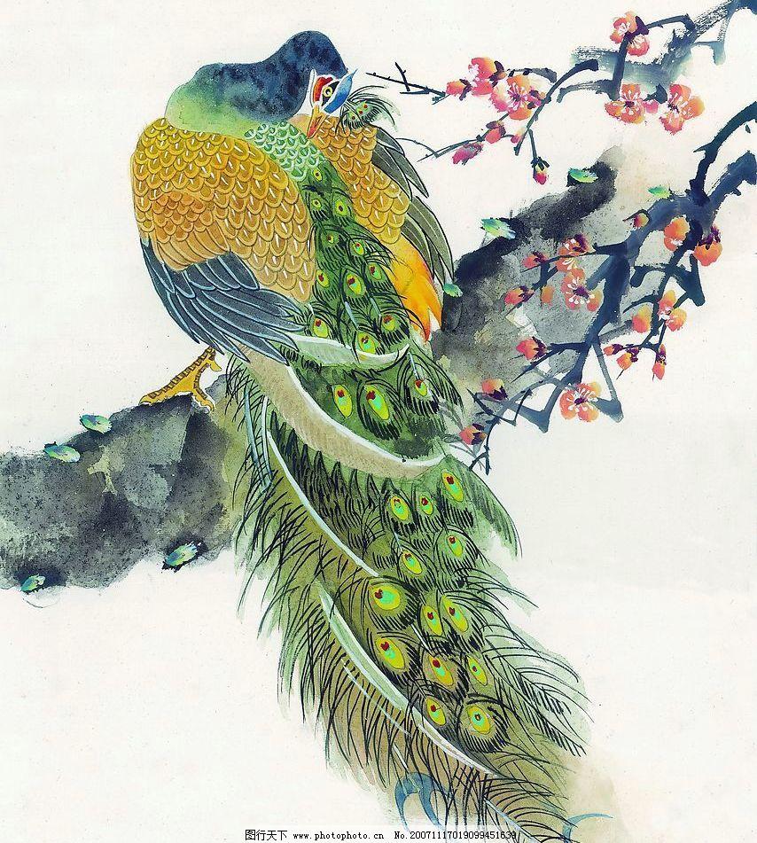 孔雀4 梅花树上的孔雀 文化艺术 绘画书法 吉祥鸟类 设计图库 72 jpg
