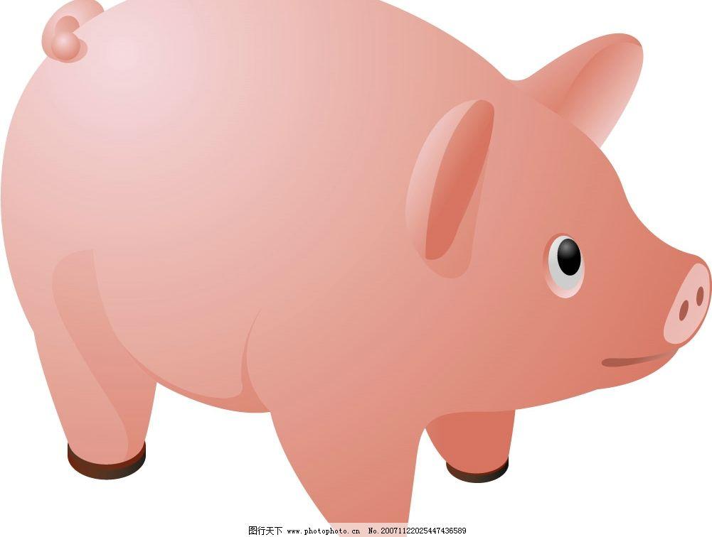 矢量动物 猪 生物世界 其他生物 动物 矢量图库   ai