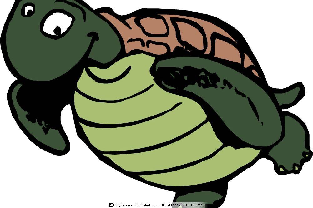 矢量动物 龟 生物世界