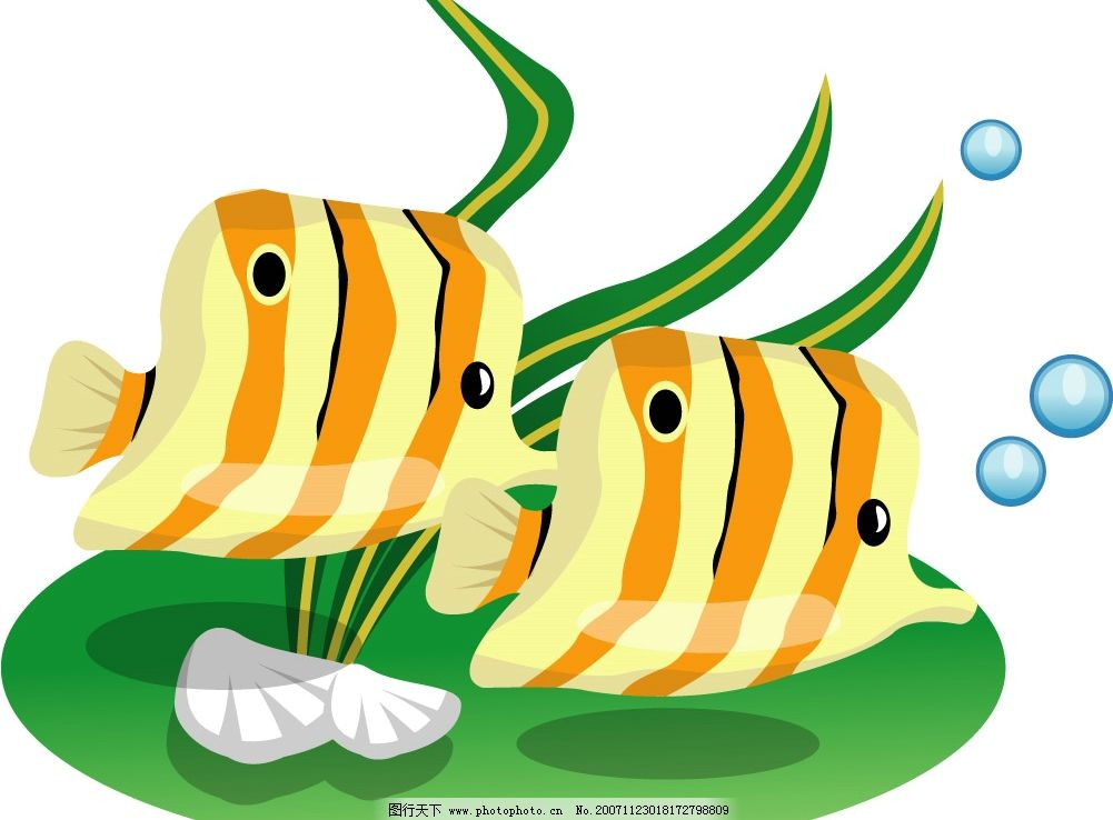 矢量动物 鱼 生物世界 其他生物 动物 矢量图库   ai