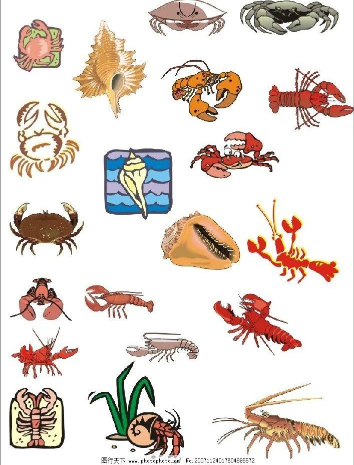 海洋生物 生物世界 矢量图库   cdr