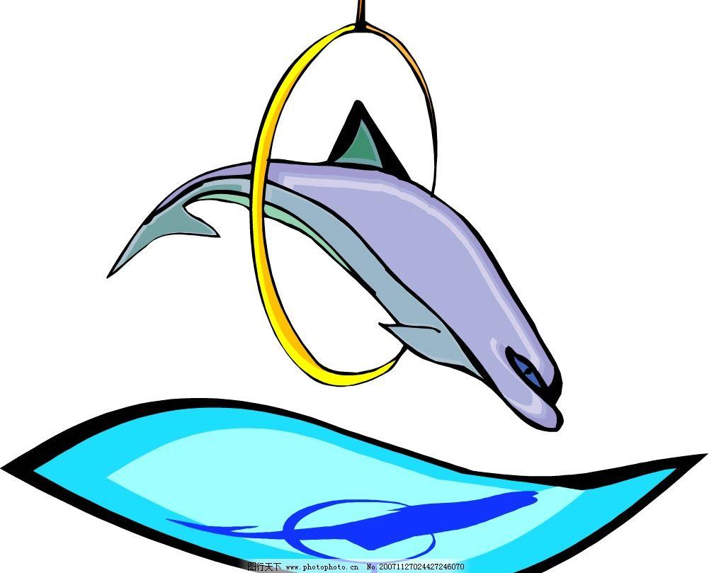海豚 表演 水上世界 动物游乐园 矢量图库