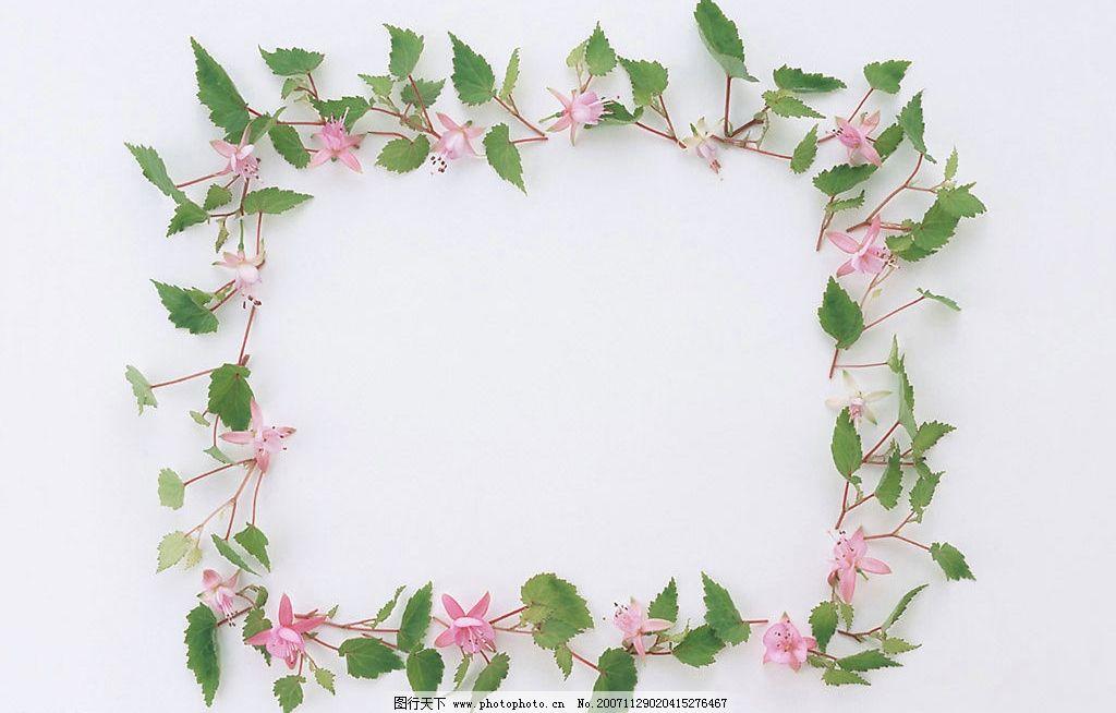 植物花朵边框1 花 边框 绿叶 底纹边框 边框相框 植物花朵边框 设计