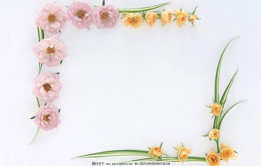 植物花朵边框12 花 边框 绿叶 植物 底纹边框 边框相框 植物花朵边框