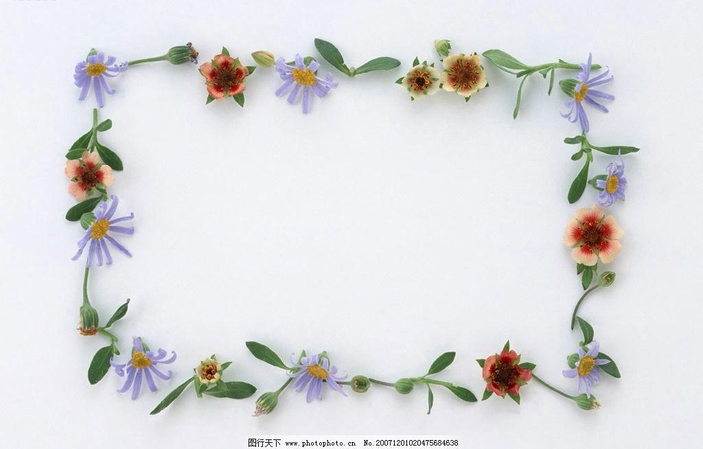植物花朵边框10 花 边框 绿叶 植物 底纹边框 边框相框 植物花朵边框