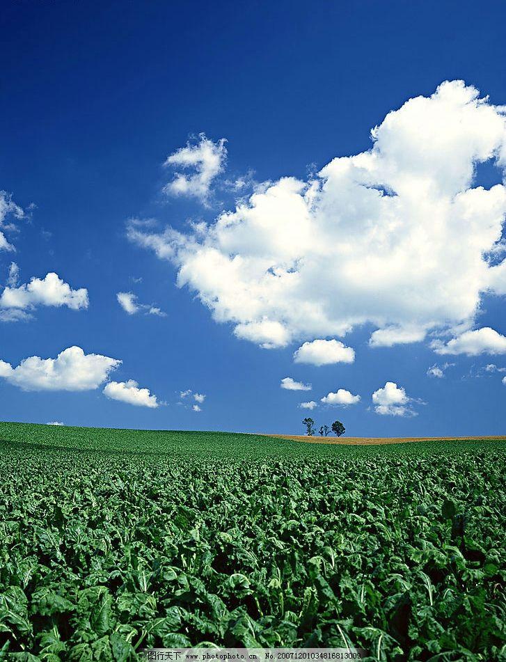 自然景观 自然风景 蓝天白云大地 摄影图库 350 jpg