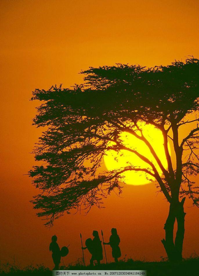夕阳系列 大象 黄昏 夕阳 黄色 动物 非洲 太阳 自然景观 自然风景