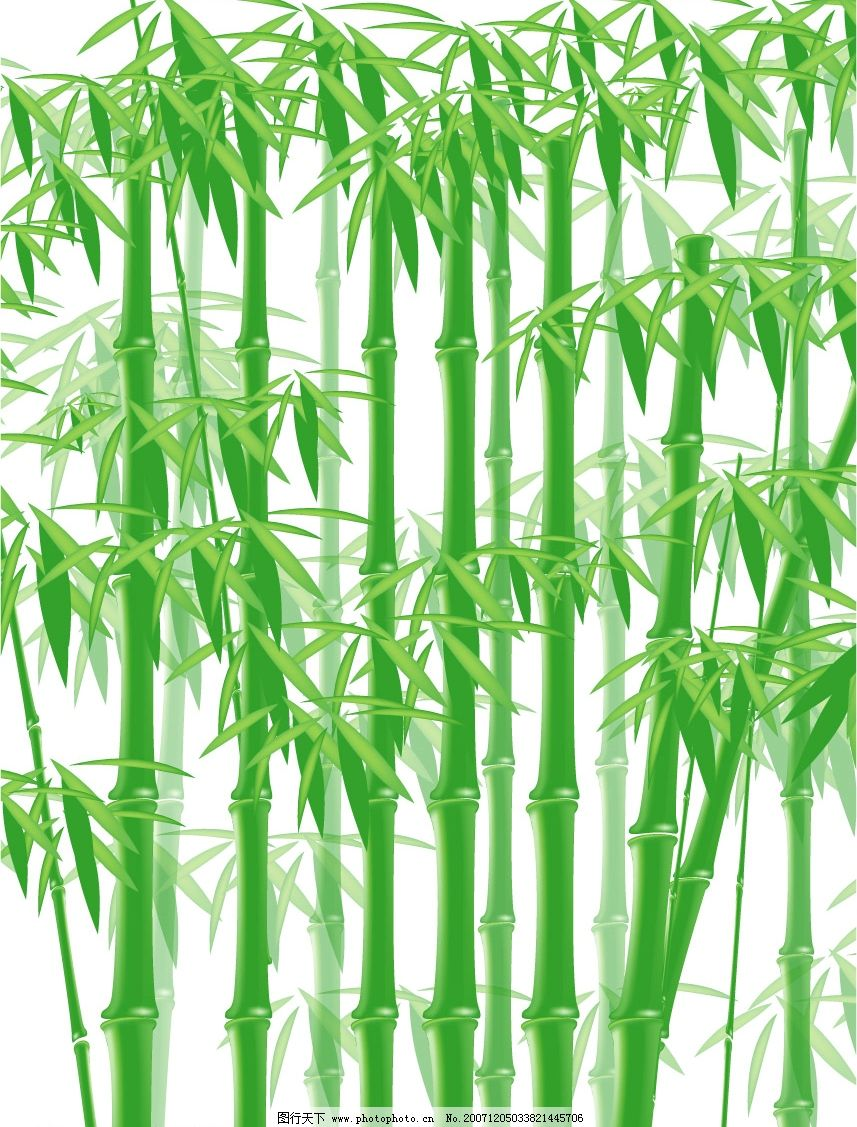 手机桌面竹林壁纸