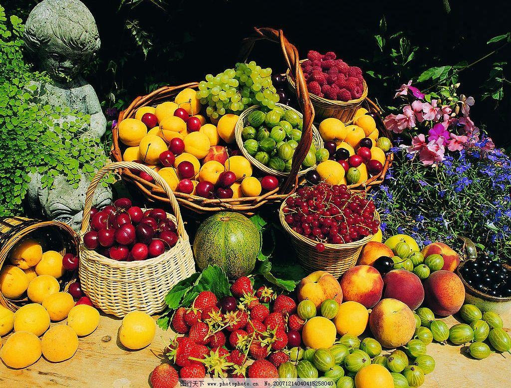 美食 水果 色彩 蔬菜 餐饮美食 食物原料 摄影作品 植物 摄影图库 72