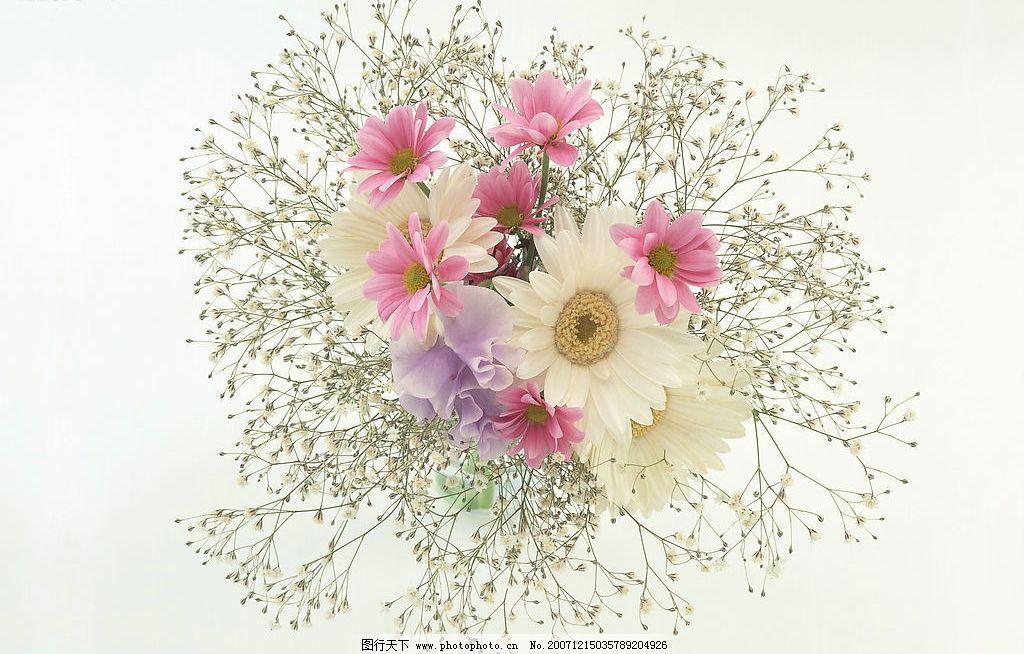 幼儿简笔画一束花