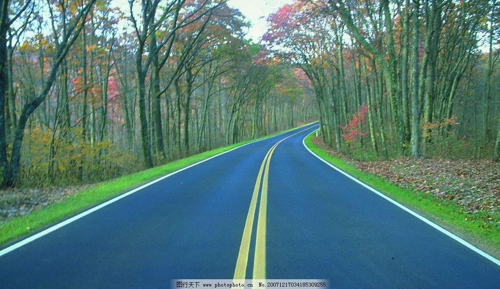风景公路图片
