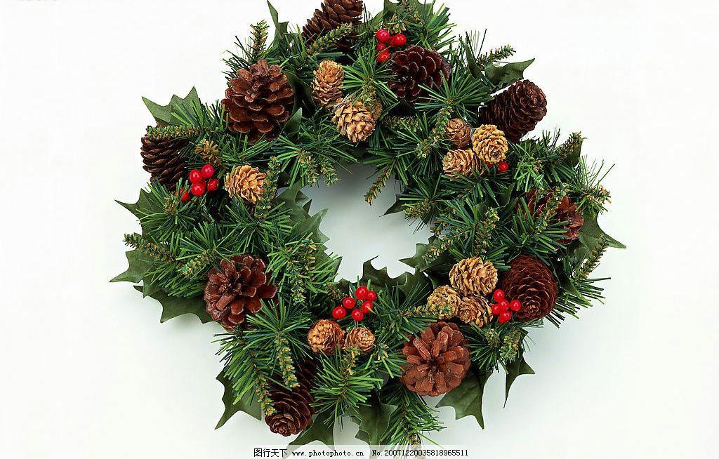 圣诞 节日 摄影 素材图片_树木树叶_生物世界_图行