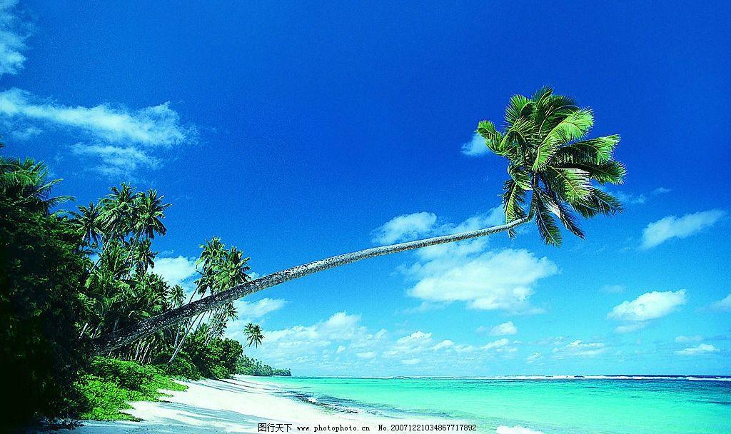 椰树 岛屿蓝天大海椰林碧海 岛屿沙滩 摄影图库