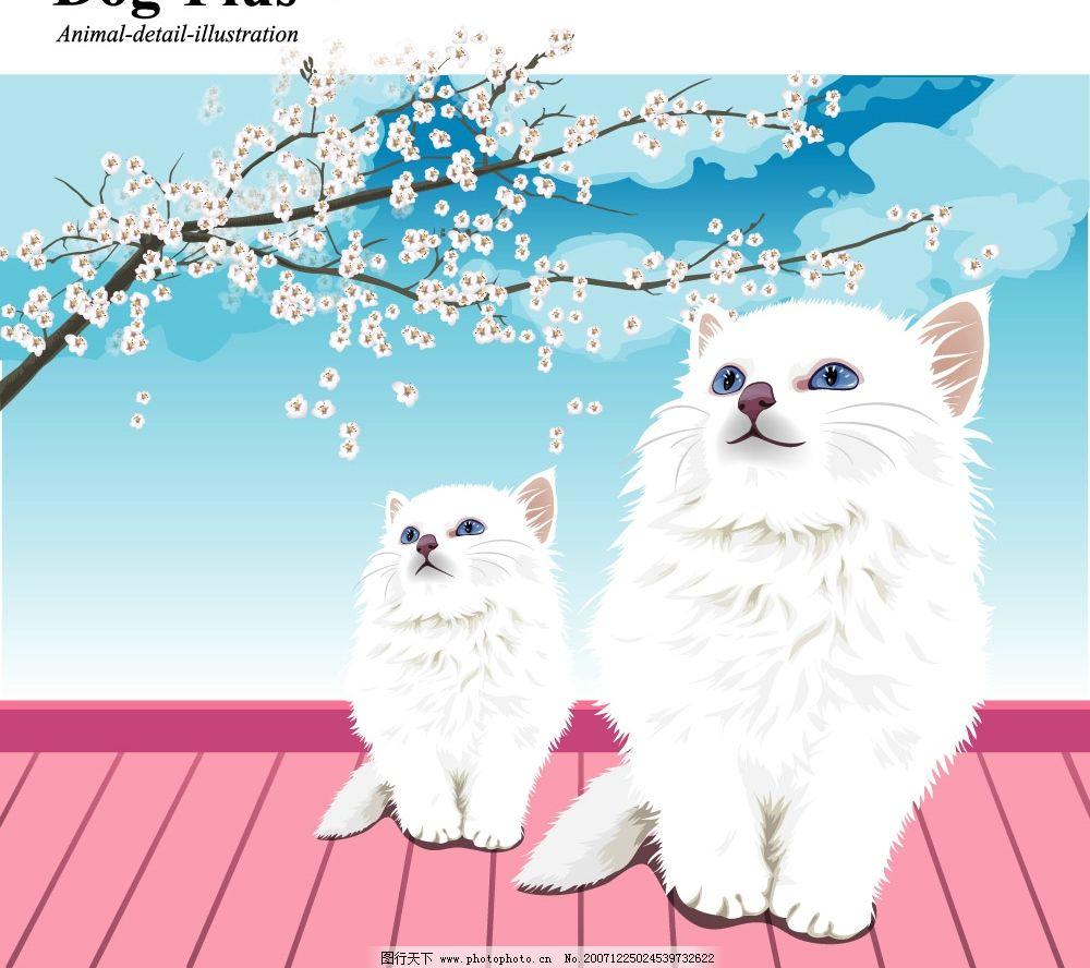 宠物猫狗矢量图图片