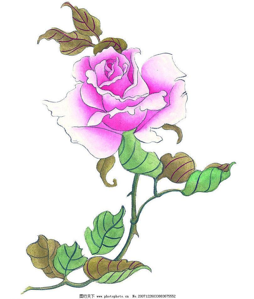 玫瑰花 其他 图片素材 花 设计图库 72 jpg
