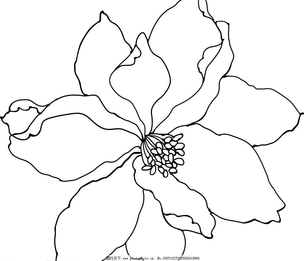 韩国可爱花边边框简笔画