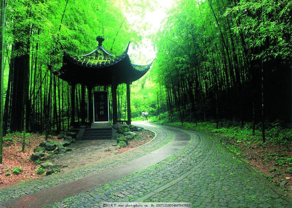 云栖竹径 亭子,竹子,竹林,山间小路,石路, 自然景观 风景名胜 西湖